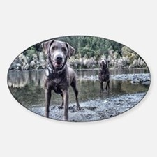 Cute Labrador playing Sticker (Oval)