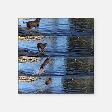 """Unique Labrador retreiver Square Sticker 3"""" x 3"""""""