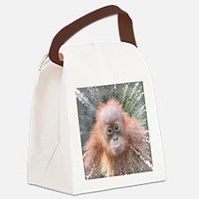 Funny Baby orangutan Canvas Lunch Bag
