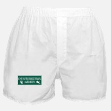 Extraterrestrial Highway, Nevada - US Boxer Shorts