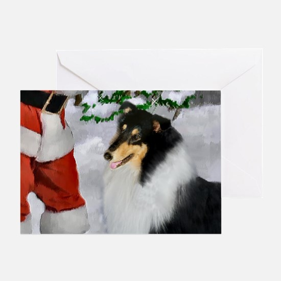 Tri Collie Christmas Greeting Card