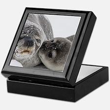 Seal Pup Kisses Mom Keepsake Box