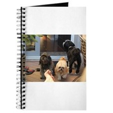 3 dogs and foot Journal