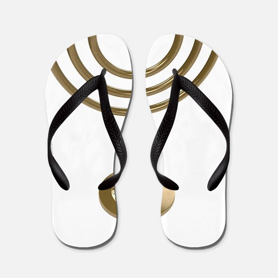 Cute Chanukkah Flip Flops