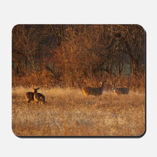 Bucks And Does Mousepad