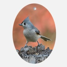 Titmouse Oval Ornament