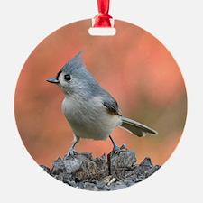 Titmouse Ornament