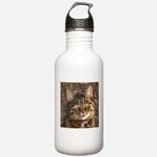 Cat002 Water Bottle