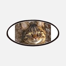 Cat002 Patch