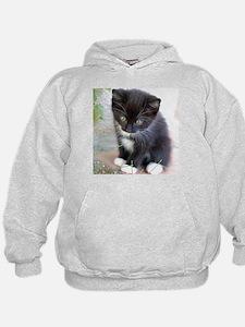 Cat003 Hoodie