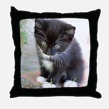 Cat003 Throw Pillow