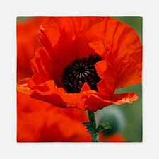 Beautiful Red Poppy Queen Duvet