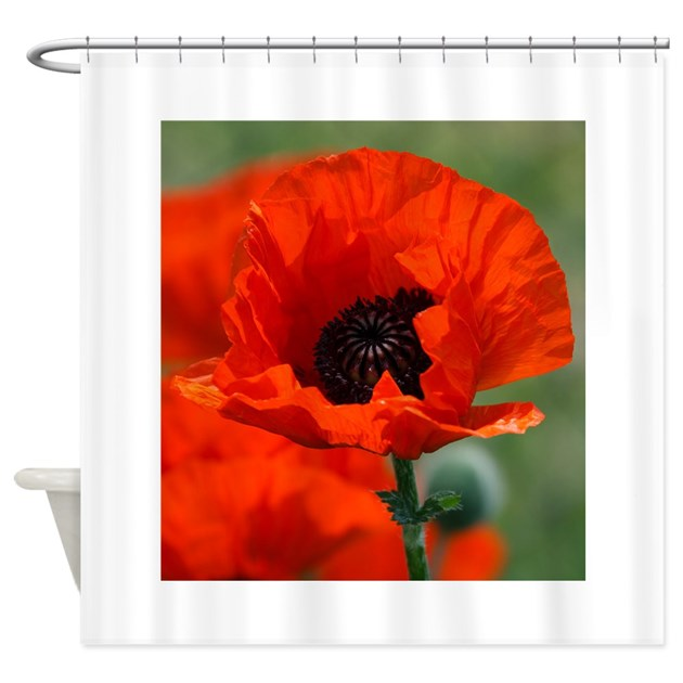 Beautiful Red Poppy Shower Curtain by Admin CP