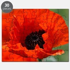 Beautiful Red Poppy Puzzle