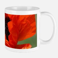Beautiful Red Poppy Mugs
