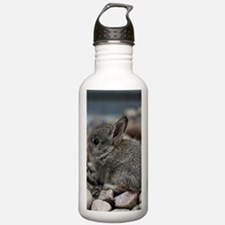 SMALL BABY BUNNY Sports Water Bottle