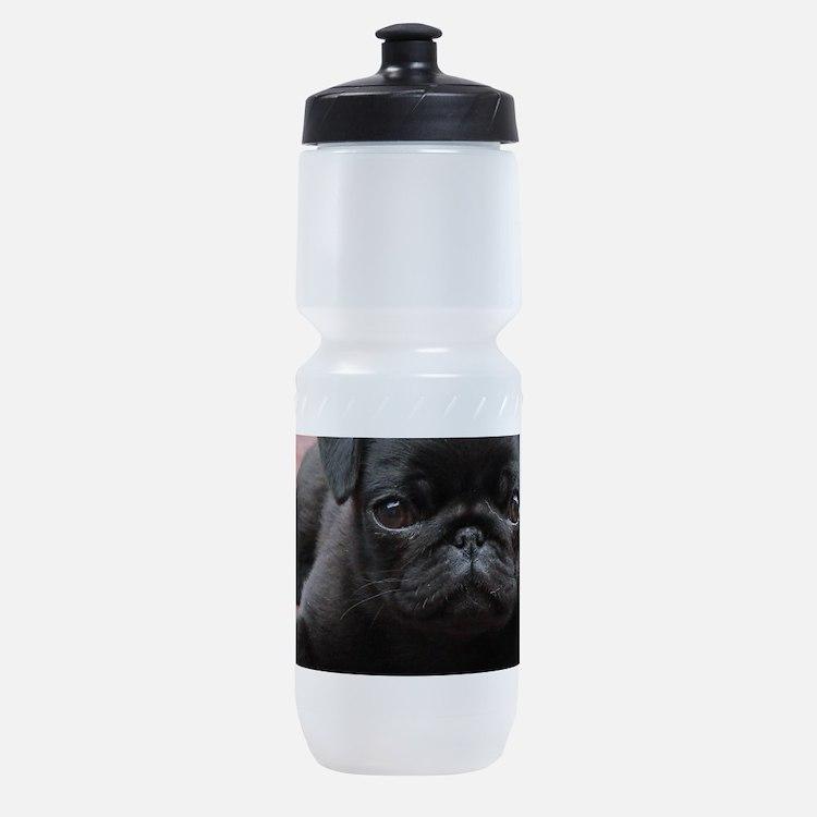 ALERT PUG PUPPY Sports Bottle