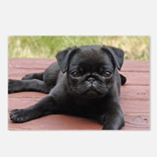 ALERT PUG PUPPY Postcards (Package of 8)