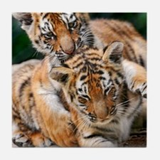 BABY TIGERS Tile Coaster