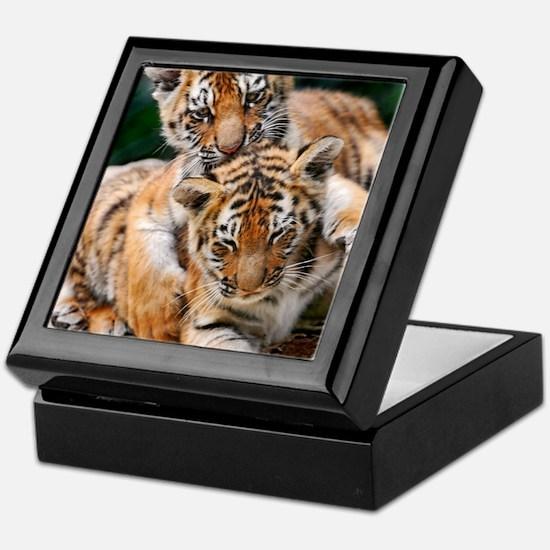 BABY TIGERS Keepsake Box