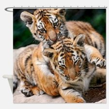 BABY TIGERS Shower Curtain