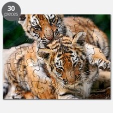 BABY TIGERS Puzzle