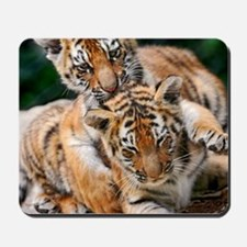 BABY TIGERS Mousepad