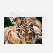 BABY TIGERS Greeting Card