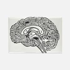 Cute Brain Rectangle Magnet (10 pack)