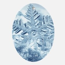Snowflake Crystals Oval Ornament