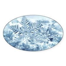 Snowflake Crystals Decal