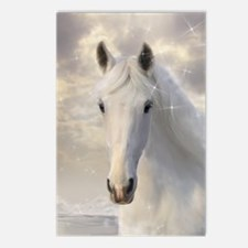 Sparkling White Horse Postcards (Package of 8)