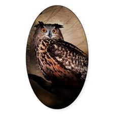 Halloween Owl Bumper Stickers