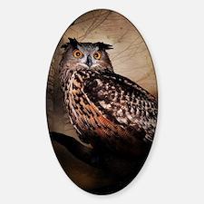 Halloween Owl Decal