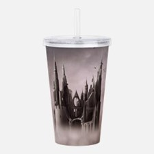 Gothic Castle Ruins Acrylic Double-wall Tumbler