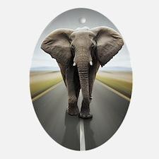 Elephant Trucker Oval Ornament