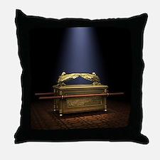 Throw Pillows Spotlight : Spotlight Pillows, Spotlight Throw Pillows & Decorative Couch Pillows
