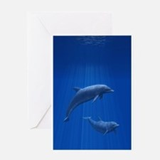 Dolphin Couple Greeting Card