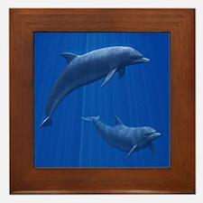 Dolphin Couple Framed Tile