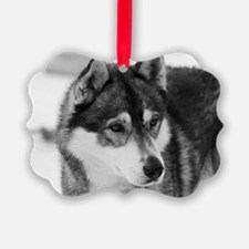 Cute Husky dog Ornament