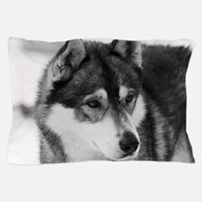 Cute Black and white dog photos Pillow Case