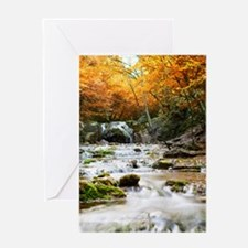 Autumn Forest Waterfall Greeting Card
