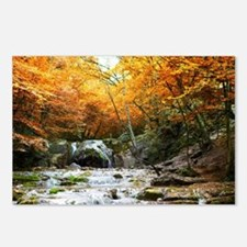 Autumn Forest Waterfall Postcards (Package of 8)