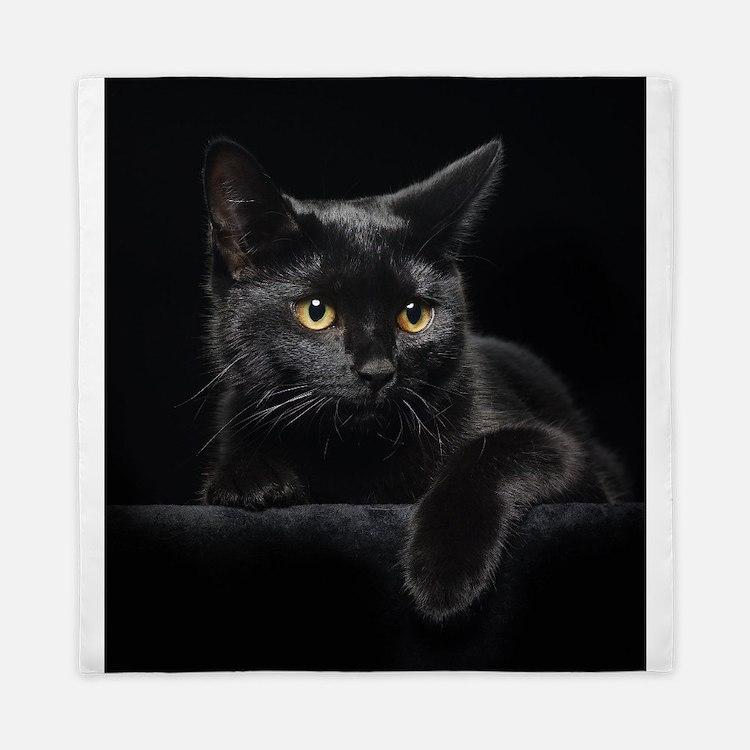 Queen black cat