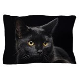 Black cat Pillow Cases