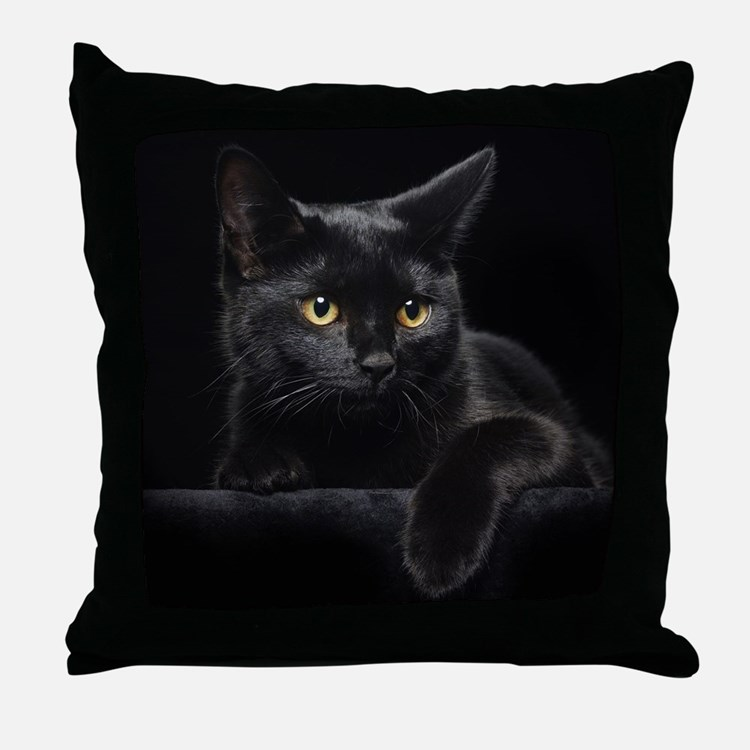Black Cat Pillows, Black Cat Throw Pillows & Decorative. Glass Room Divider. Art For Kids Room. Decorative Sconces. Sectional Living Room. Rooms In Gatlinburg. Carbon Filters For Grow Rooms. Curtains For Baby Girl Room. Rooms For Rent In Malden Ma