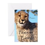 Peace On Earth Holiday 10 Pk Greeting Cards