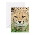 Season's Greetings From Harry 10 Pk Greeting C