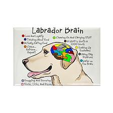 Cute Labrador retriever Rectangle Magnet
