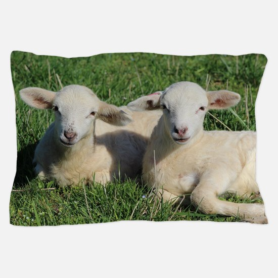 Funny Sheep Pillow Case